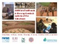 AWM and livelihoods in the crop livestock systems of the Volta basin