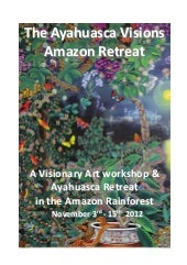 Ayahuasca and Visionar