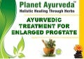 Ayurvedic Treatment for Enlarged Prostate Gland