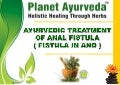 Ayurvedic medicines for fistula in ano treatment without surgery