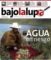 Bajo la lupa 19 low