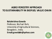 Agroforestry approach for sustainability in biofuel value chain