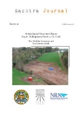 Archaeological Report - Ballinglann...