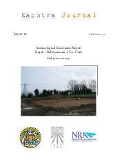 Archaeological Report - Ballynamona...