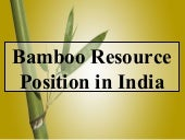 Bamboo Resouce In India