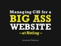 Managing CSS for a big ass website - at Netlog