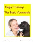Basic commands ebook