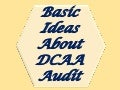 Basic Ideas About DCAA Audit
