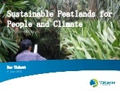Bas tinhout  - sustainable peatlands for people and climate