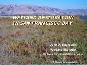 Wetland Restoration in San Francis...
