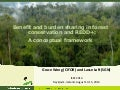 Benefit and burden sharing in forest conservation and REDD+: A conceptual framework