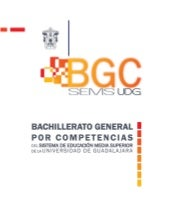 Bgc udg documento-base_evaluado_cop...