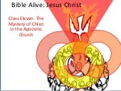 "Bible Alive Jesus Christ 011: ""The ..."