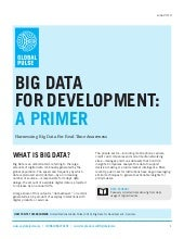 Big Data For Development A Primer