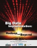 Big dataimplementation hadoop_and_beyond