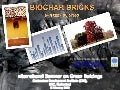 Biochar bricks and green buildings
