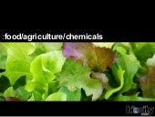 Food/Agriculture/Chemicals | Biocit...