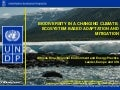 Biodiversity in a changing climate: Ecosystem based adaptation and mitigation (UNDP presentation)