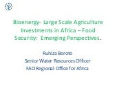 Bioenergy  large scale agriculture investments in africa - food security perspectives