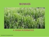 Biomass Growing Ppt