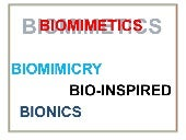 Biomemetics