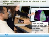 Big Data, Big Productivity Gains: Is it So Simple in Water Management?