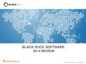 Black Duck Software's 2014 Review
