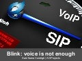 Blink: voice is not enough