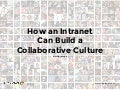 How an Intranet Can Build a Collaborative Culture
