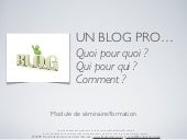Blog à usage professionnel