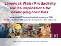 Livestock water productivity and its implications for developing countries: harnessing WP in crop-livestock systems of SSA