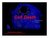 BOC lecture 7 cell death