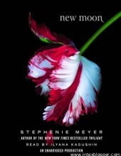 Book 2   new moon