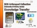BOS Arthropod Collection (University of Oviedo): Knowledge transfer