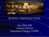 Bowelobstruction