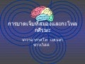 Brain And Craniofacial (Thai)