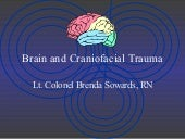 Brain And Craniofacial Trauma   Brenda