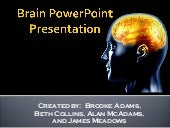 Brain Power Point   Group 2