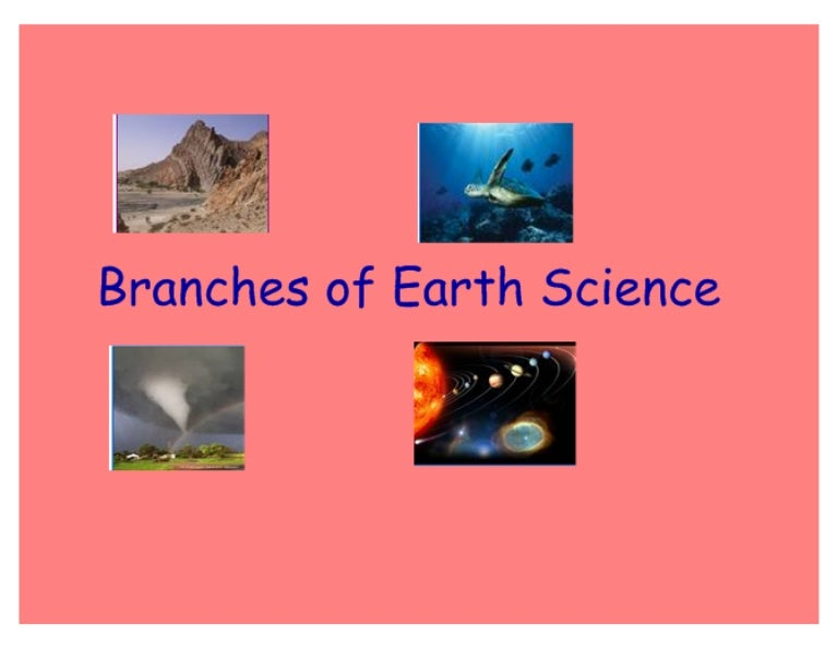 What are the two main branches of science?