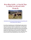 Breeding Cattle - 5 Crucial Tips To Help You Breed Cattle Properly