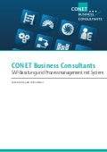 Bro conet-business-consultants-image-may2012-de