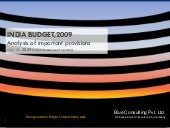 Budget Analysis by Blue Consulting ...