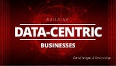 Building Data-Centric Businesses