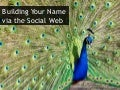 Building Your Name via the Social Web at indieconf 2011