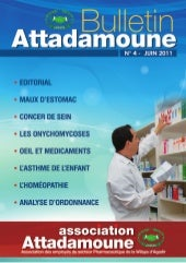 Bulletin Attadamoune 2011