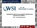 Business cases wsi