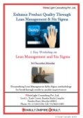 Business results through Lean Mgmt & Six Sigma Dec 2013 | Mumbai