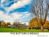 Butterfly bridge sannam kalra