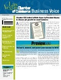Business Voice January 2010