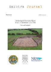 Archaeological Report - Caherdrinny...